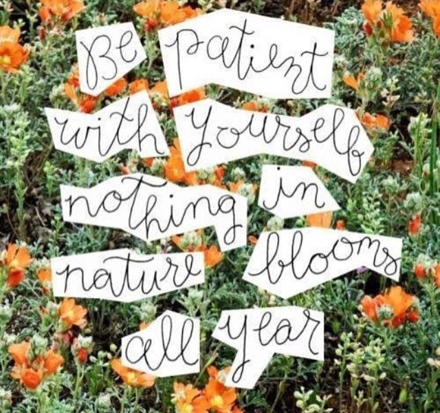 Be patient with yourself, nothing in nature blooms all year